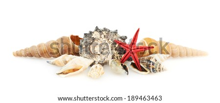 Pile of seashells isolated over the white background - stock photo