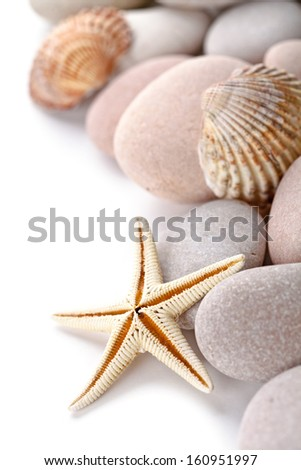 pile of stones, shells and sea star closeup on white background - stock photo