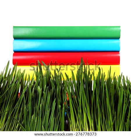 Pile of the Books in the Grass on the White Background Closeup - stock photo