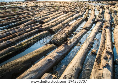 Pile of wood be immersed in water - landscape exterior Asia Thailand - stock photo