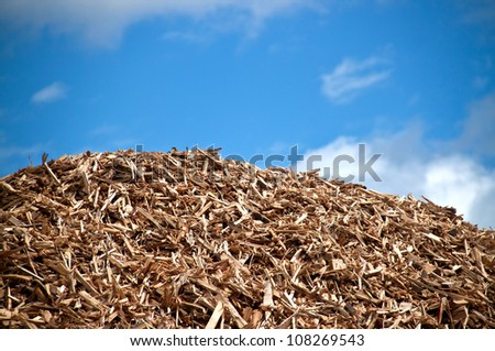 Pile of wood for combustion in biomass power plant - stock photo