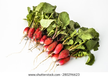 Pile of young fresh ecological radishes dirty from the ground on a white background  - stock photo