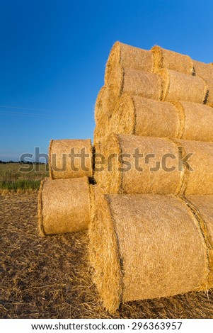 Piled hay bales on a field against blue sky at sunset time - stock photo