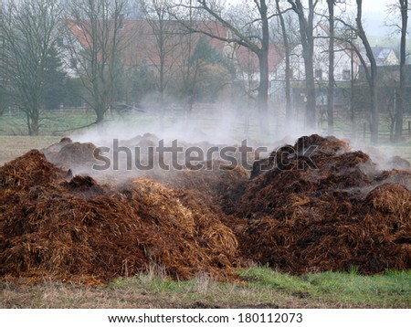 piles of dung - stock photo