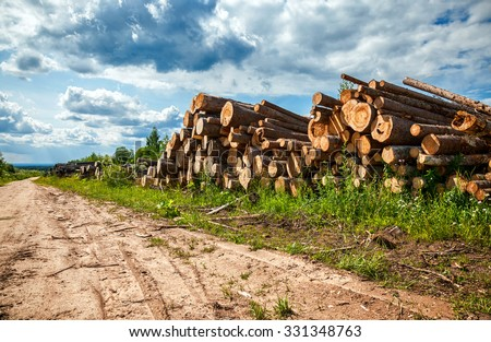 Piles of timber along the forest road in summertime - stock photo