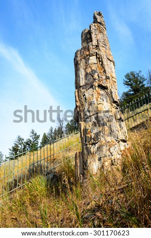 Pillar at Yellowstone National Park - stock photo