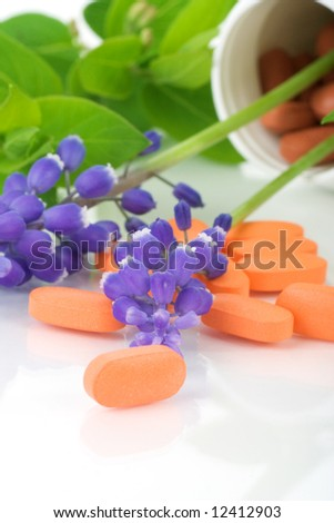 pills and plants, concept of natural healthcare - stock photo