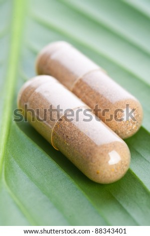 Pills closeup on the leaf - stock photo