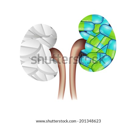 Pills kidneys shape. Colorful capsules and white pills in the kidneys. Kidney treatment concept. - stock photo