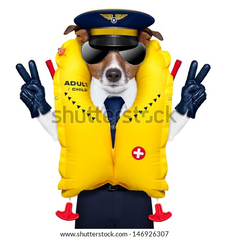 pilot captain dog wearing  emergency life vest with peace fingers - stock photo