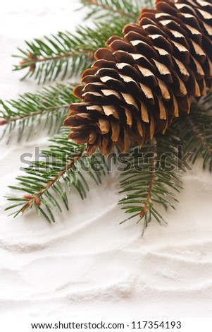 Pine cone and spruce branch on the snow. - stock photo