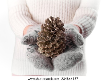 pine cone in hands on mittens isolated on white background - stock photo