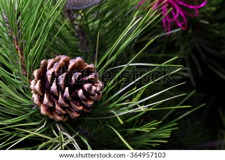 pine cone on a branch. Christmas festive background - stock photo
