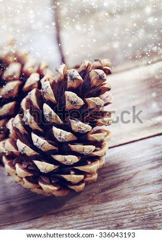 Pine cones on old wooden background - stock photo