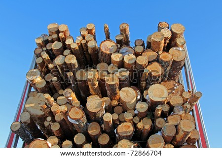 Pine Logs on Logging Semi Trailer with Blue Sky Background - stock photo