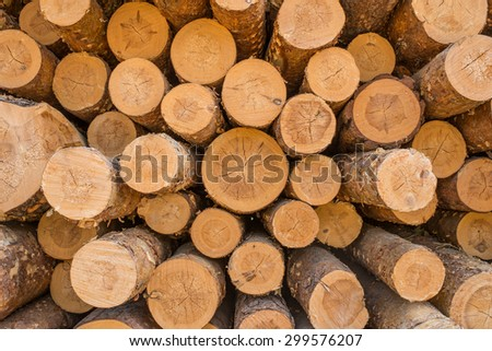 pine logs stacked in a pile - stock photo