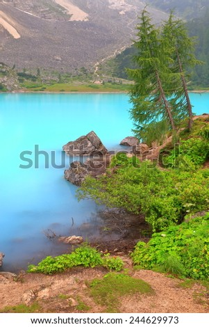 Pine trees and green vegetation on the shores of Sorapis lake, Dolomite Alps, Italy - stock photo