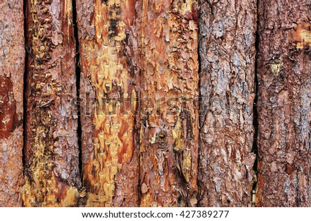 Pine wood fence as a background - stock photo