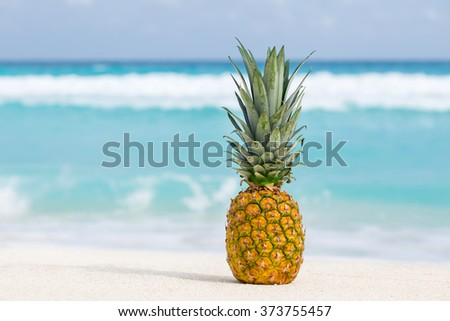 Pineapple fruit on sand against turquoise caribbean sea water. Tropical summer vacation concept - stock photo