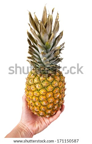 pineapple in a hand, isolated on the white - stock photo