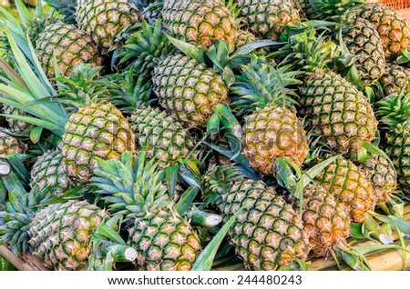Pineapple or Ripe pineapple, Pile of Organic Pineapple at the market - stock photo