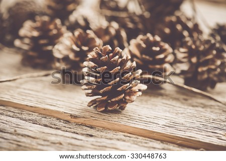 Pinecones on Rustic Wood Background - stock photo