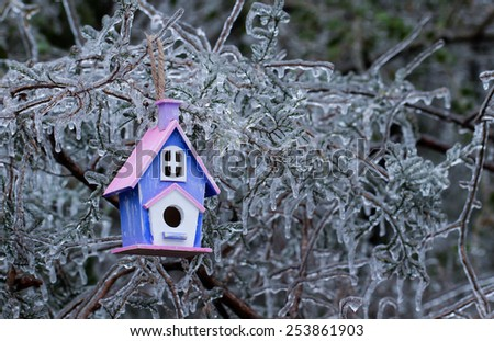 Pink and purple wood birdhouse hanging on ice covered tree branches after ice storm - stock photo