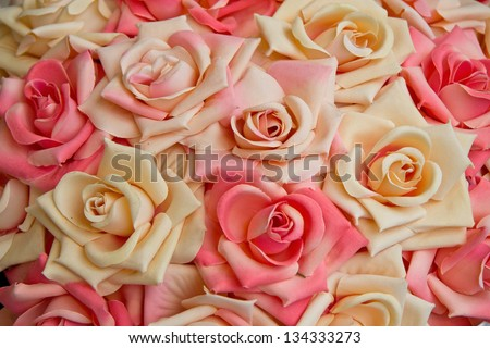 Pink and white roses horizontal - stock photo