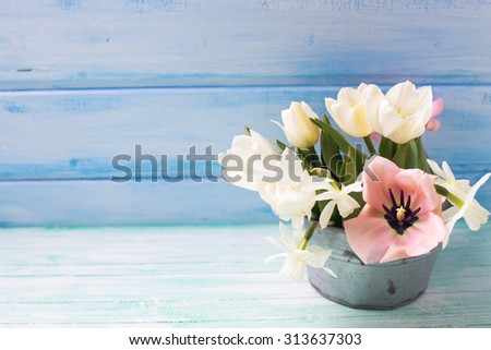 Pink and white tulips and white narcissus flowers in vintage bowl  on turquoise  painted wooden planks against  blue wall. Selective focus. Place for text.   - stock photo