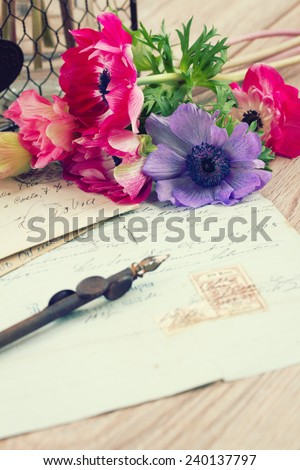 pink anemone flowers  with old retro  quill pen and antique letters  - stock photo