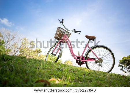 Pink bicycle in the park - stock photo