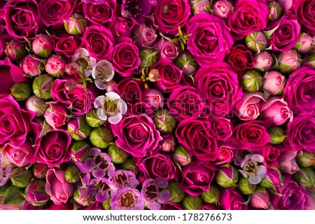 Pink bouquet roses as a background - stock photo