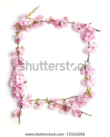 pink branch floral border, white background - stock photo
