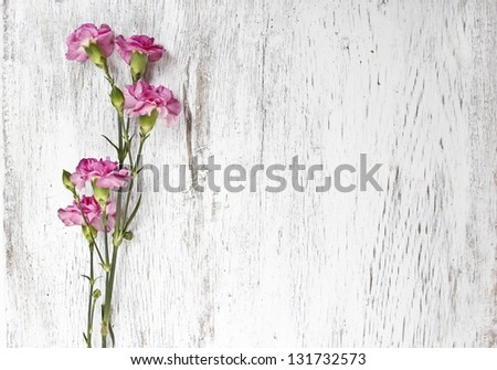 Pink carnation isolated on wooden background - stock photo