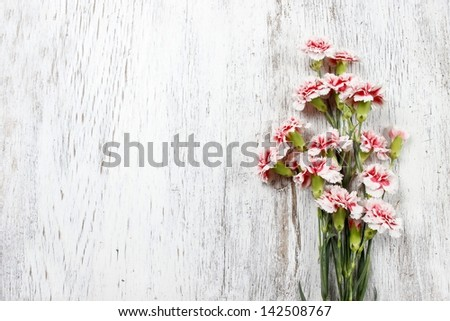 Pink carnations isolated on wooden background - stock photo