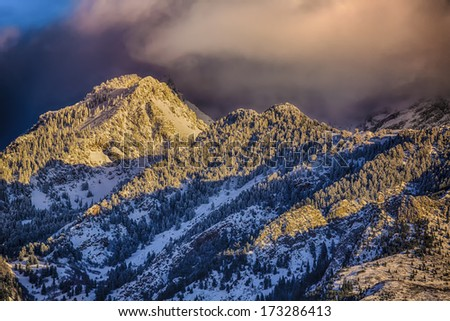 Pink clouds hang over the Wasatch mountains in January after a winter snow storm picture taken from the Salt Lake City Valley Utah USA / Sunset Clouds Over Snowy Pines - stock photo