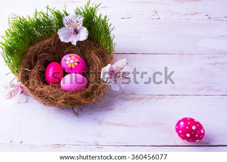 pink Easter eggs in a nest with white flowers in the green fresh grass on the white wooden background. Easter background. Easter symbol. Easter hunt. Copy space - stock photo