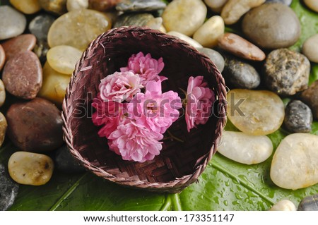Pink flower in basket and pebbles on a wet green mat  - stock photo