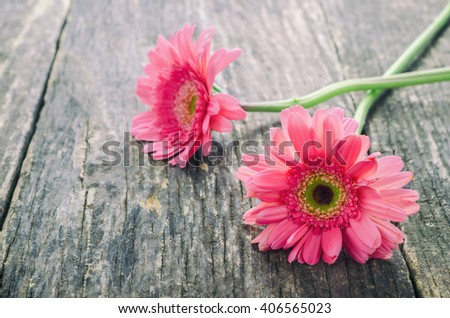 Pink Gerbera daisy flower on wooden table with vintage tone - stock photo