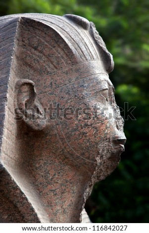 Pink granite Sphinx head detail, Cairo. The head of the Sphinx is widely believed to be a representation of the Pharaoh Khafre. - stock photo