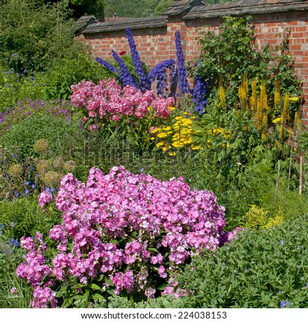 Pink Impatiens, blue Delphiniums, yellow Achillea, flowers in the walled gardens of Chartwell House, Winston Churchill's home until his death in 1965.  he was a keen gardener. - stock photo