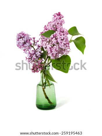Pink lilac  bouquet in a vase isolated on white background  - stock photo
