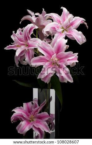 Pink lilies in a glass vase - stock photo