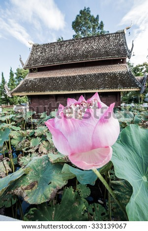 Pink Lotus with Ancient Thai Church in Water Pond, Thailand. - stock photo