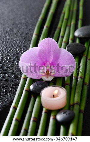 Pink orchid and bamboo grove,candle ,stones on wet black background   - stock photo
