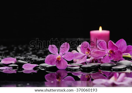 pink orchid and candle on black stones  - stock photo