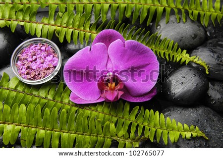 Pink orchid and stones with green fern with salt in bowl on pebbles - stock photo
