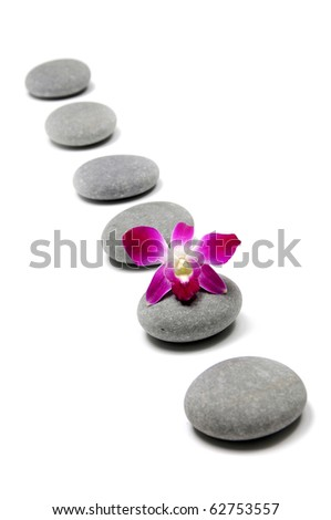 pink orchid with a line stones - stock photo