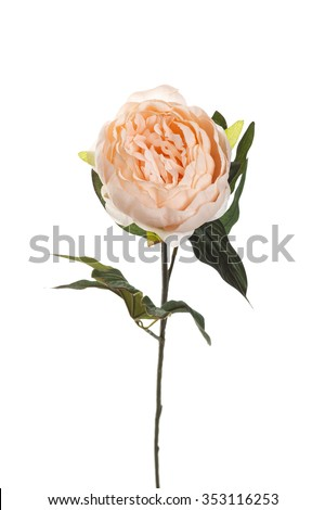 Pink peony artificial flower isolated on white background - stock photo