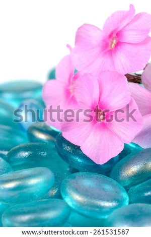 Pink Phlox Flowers with Blue Glass Stones Close-Up - stock photo